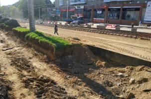 Зеленстрой прокомментировал озеленение на Николаева