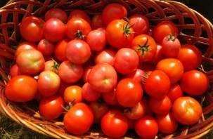 Через Смоленскую область пытались провезти томаты под видом строительных блоков
