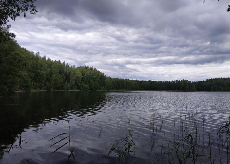 В воскресенье в Смоленской области пройдут дожди