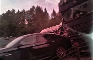 В Смоленской области разыскивают свидетелей жесткого ДТП с фурой, микроавтобусом и тремя легковушками