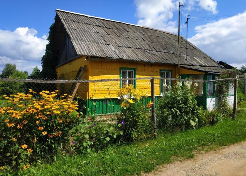 В Починковском районе поймали дачного вора