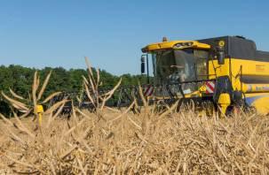 В сельское хозяйство Смоленщины вливают миллиарды