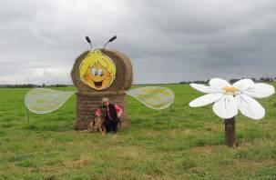 В Сафоновском районе в поле устроили театр из сена