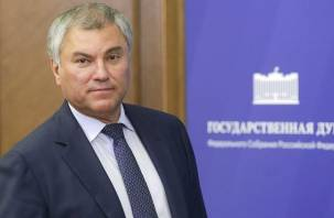 Спикер Госдумы Володин назвал «умное голосование» несодержательным проектом
