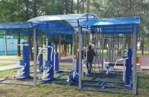 В Заднепровье появилась новая спортивная площадка