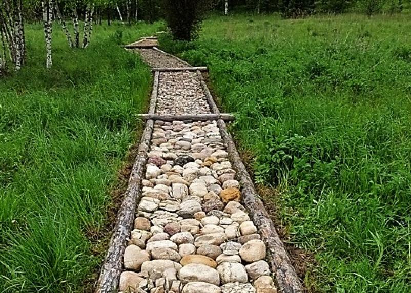 «Тропа босых» появится в Смоленском Поозерье