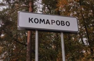 Депутат Ленинградской области «зарубил жену, отрезал ей уши и воткнул ложку в глаза»