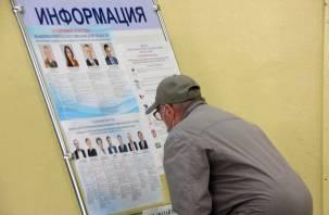 Как идут выборы в Смоленской области. Явка на 15 часов