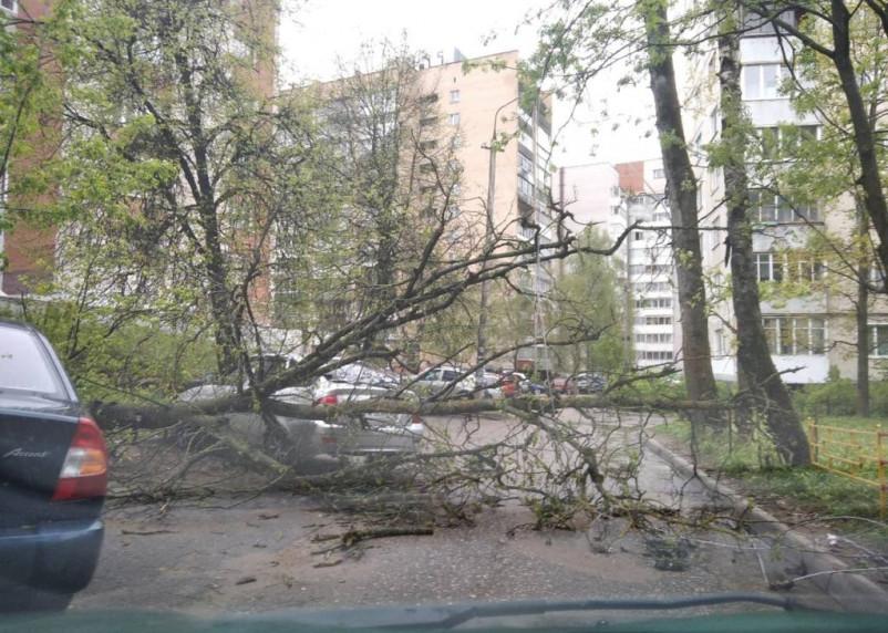 Треть ЧС. Синоптики назвали самое опасное погодное явление в России