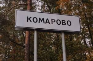 «Из глаз торчали ложки». Подробности убийства жены ленинградского депутата