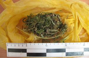 В Сафоново поймали пассажира авто с марихуаной