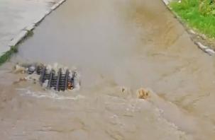 Потоп случился в Промышленном районе Смоленска