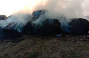 30 рулонов сена сгорели в Гагаринском районе