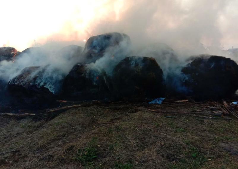 В Сафоновском районе сгорело сено в рулонах