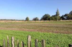 В Смоленской области определили, каким фермерам и кооперативам дадут деньги