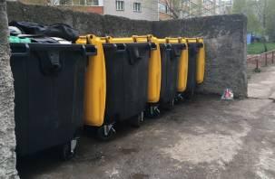 В Смоленской области изменились нормативы накопления мусора