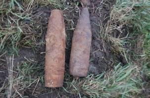 В Смоленской области обнаружили минометную мину