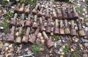 В Смоленской области обнаружили минометную мину и большой арсенал гранат