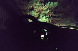 В Смоленске угонщик попался в нетрезвом виде на ворованной машине