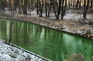 По Смоленску потекли «зеленые реки»