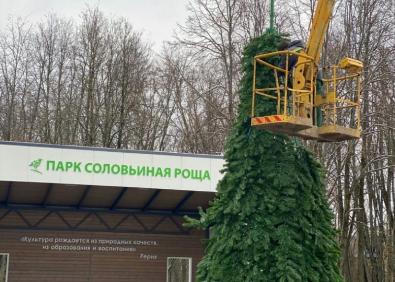 В Смоленске в Соловьиной роще установили ёлку
