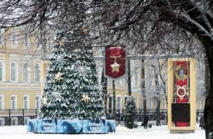«Желтый» уровень погодной опасности ввели в Смоленской области из-за аномальных морозов