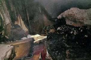 Смерть в огне. В Смоленской области при пожаре погиб мужчина