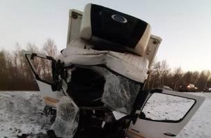 Машина в хлам. В ДТП большегрузов пострадал водитель