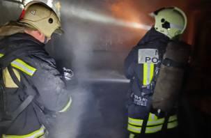 В Смоленской области на пепелище обнаружили труп мужчины