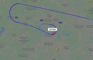 Круживший над Сычевкой рейс «Москва-Амстердам» успешно сел в Шереметьево
