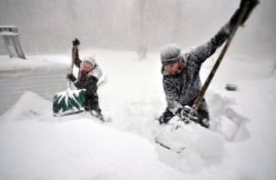В Смоленске чиновники предлагают горожанам взяться за лопаты
