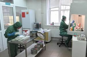 Новые случаи коронавируса на 2 марта выявили в 15 районах Смоленской области