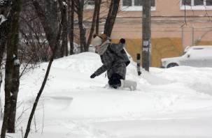 Опять «двойка». Смоленск утонул в снегу