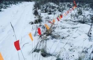 В Смоленской области идет охота на волков до 31 марта