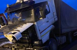 Загоревшуюся на ходу фуру в Смоленской области потушили автомобилисты