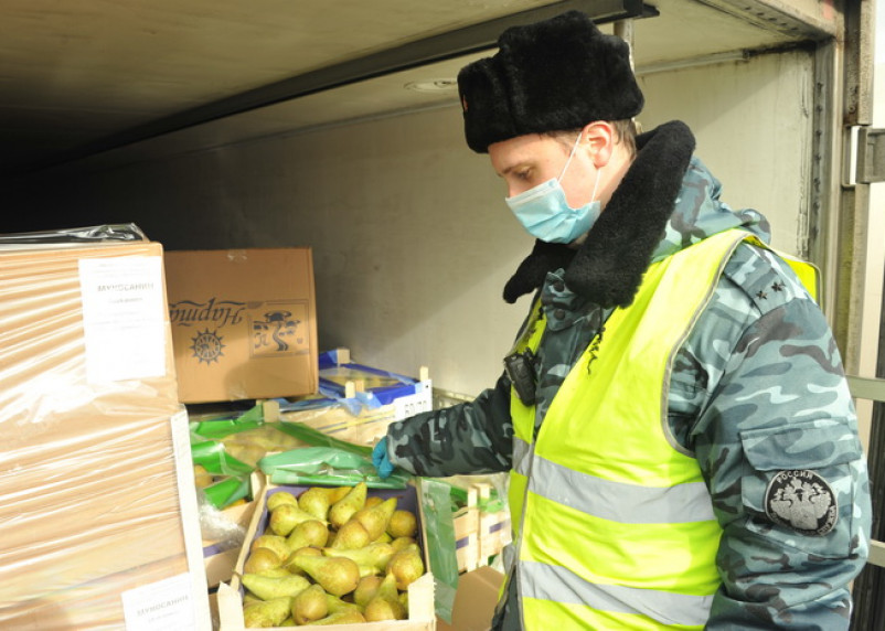 Смоленские таможенники задержали более 130 тонн груш и 7 тонн салата