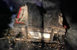 В Смоленской области на ходу загорелась фура
