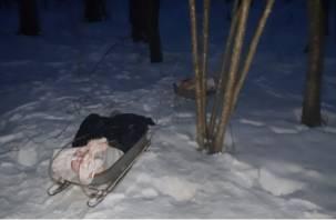 За убийство лося смолянину грозит пять лет тюрьмы