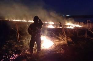 Первый пал. В Смоленском районе около озера ТЭЦ-2 загорелась трава