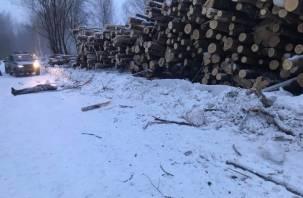 Смолянин погиб, врезавшись в бревна на обочине дороги