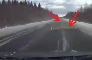 Летящие бревна с фуры чуть не спровоцировали аварию в Смоленской области?