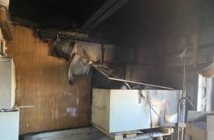 Погибли птенцы перепелок. В гаражном комплексе «Энергетик-2» произошел пожар