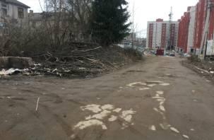 Смоленские новоселы жалуются на «фекальные реки, мусорные берега»