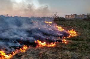 Штормовое предупреждение объявили в Смоленской области