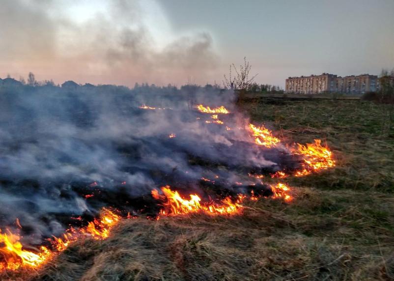 Пожары и взрывы по всей планете. Астролог дала «жаркое предсказание» на июль