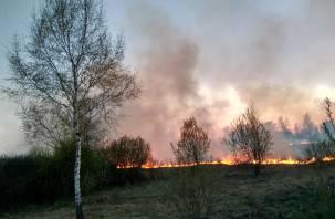 Сгорели 366 гектаров. За сутки смоленские пожарные более 120 раз выезжали на тушение травы