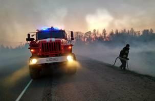 С 12 апреля в Смоленской области установлен пожароопасный сезон