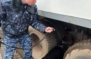 Собака Вольт нашла в КамАЗе пять сотовых телефонов для заключенных