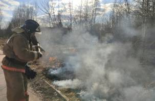 На Смоленщине выгорел почти целый город