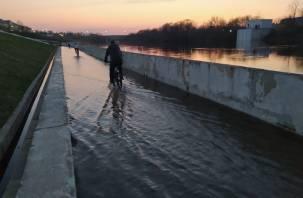 5 мая в Смоленской области ожидается существенное потепление